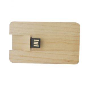 card-usb-legno